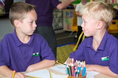Primary School Boys Learning